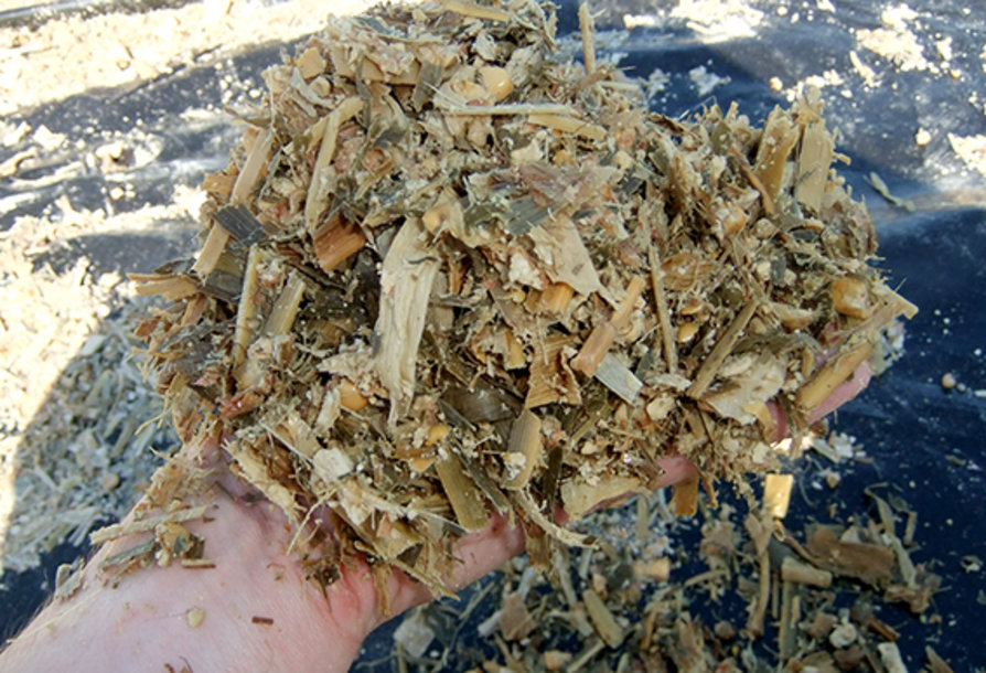 Batter quality silage USA